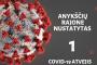 Teigiama, kad fiksuotas pirmas susirgimo koronavirusu atvejis